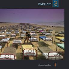 // Pink Floyd - A Momentary Lapse Of Reason (180gr)