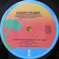 Palmer, Robert - I Didn\'t Mean To Turn You On