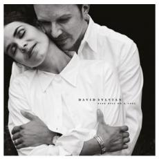 Sylvian, David ( Japan ) - Dead Bees On A Cake (2 LP)
