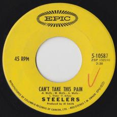 Steelers - Can\'t Take This Pain