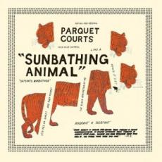 Parquet Courts - Sunbathing Animal [re]