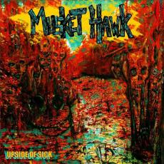 Musket Hawk - Upside Of Sick