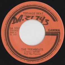 Teenbeats, The - Teenage Beat / Strength Of The Nation