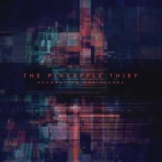 Pineapple Thief, The - Rsd2020 - Uncovering The Tracks ( 12\