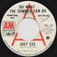 Cee, Joey - Oh What The Summer Can Do / Hey Mama (it\'ll Work Our Right)